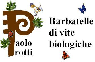 Protti barbatelle di vite biologiche home page for Barbatelle di vite