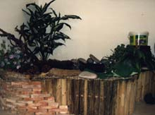 Aquarium house tutto per il laghetto carpe trote for Pompe e filtri per laghetti da giardino