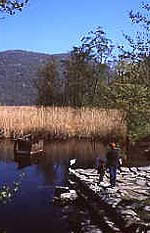 Angolo di lago.