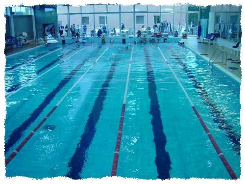 Piscina 90 bari corsi di nuoto acqua gym fin coni for Piscina wspace bari