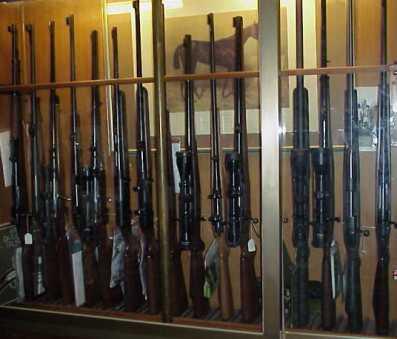 La caccia e la difesa ottiche per tutte le armi e banco di riscontro