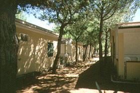 Camping - Village \
