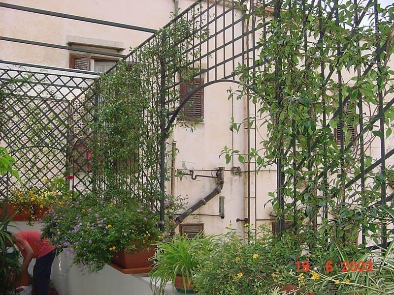 Terrazzo con grigliati grigliati e frangivento da for Grigliati con fioriera