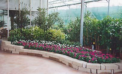 Giardino Mattoni Tufo : Giardini con tufo. giardini con tufo. giardini con tufo. giardini